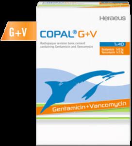 Copel-G+V